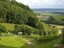 Natur und Wein: Von der Burg Neipperg herrliche Ausblicke übers Zabergäu.