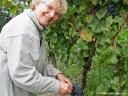 Brackenheim: Ingrid Deetjen bei der Lemberger-Weinlese - immer ein Lächeln im Gesicht.