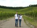 Natur und Wein in der WG Brackenheim, Sommer 2009